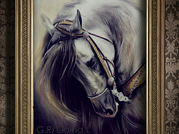 GR一笔一画 之 色粉&彩铅画 《马》