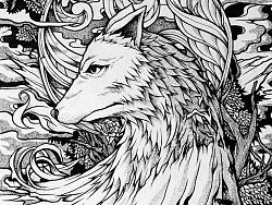 WOLF'S RAIN by 阿曦_