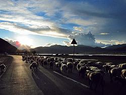 退去喧嚣,我们在路上---西藏