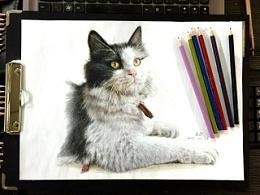 最近画的两幅彩铅。