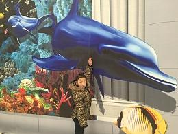 精美北京3D画作品之【海底世界】3D墙体彩绘