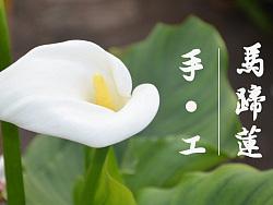 用卫生纸在家里就可以做马蹄莲花,你还花钱再去花店吗?