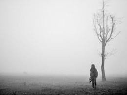 晨雾溟蒙间一树一轮回