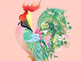 《百雀羚金鸡独立》木头猫插画设计工作室原创作品