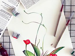 小花的水彩~露红烟绿~