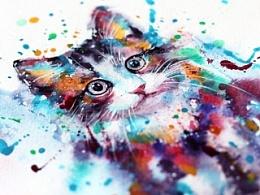 水彩下的猫青年