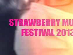 DELLIN草莓音乐节2013