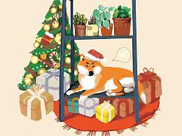 圣诞 go !