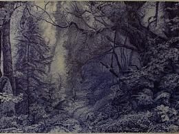 圆珠笔画,归纳,从初中到近期的,平时写生。