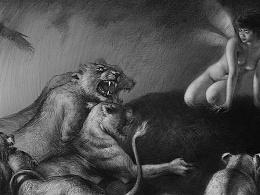 丛林-谁吃过精灵肉?