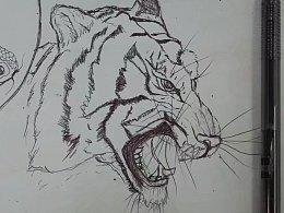 圆珠笔手绘老虎头