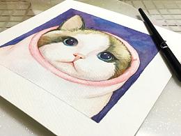 手绘水彩猫咪