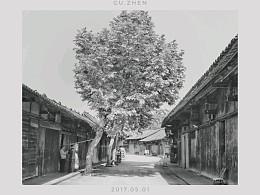 古镇掠影(四川安仁古镇、新场古镇摄影)--手机摄影