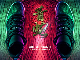 Air jordan 11/Low gerrn snakeskin/Desgined by 武减武