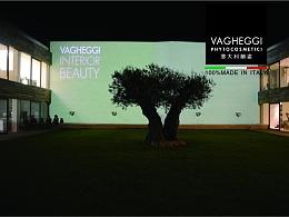 VAGHEGGI 企业手册宣传相关设计