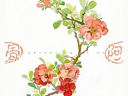 手绘花卉系列——《花之镜Ⅰ》