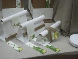 茉莉仙子(茶包装设计)