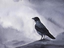 水墨速写 野生动物系列