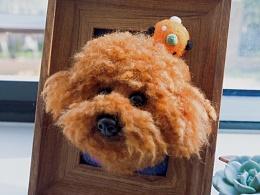 羊毛毡泰迪