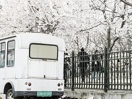 《四月北京》