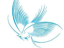 fabulousbird
