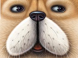 单身狗(单身也很ok)