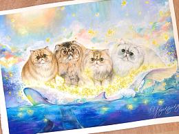 猫咪全家福——梦幻星之海