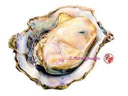 【彩铅手绘】海蛎子