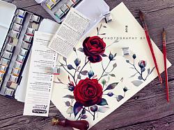 小花的水彩~暗妖红丝绒~