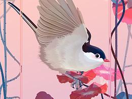 花&鸟 Part05