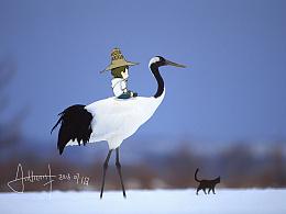 海沫‖第三期·旅行中我遇到了一群鸟 我怀抱着 斗志 自由 与它们同行