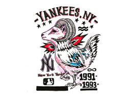 纽约养鸡队