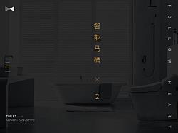 卫浴类目- 智能马桶           求职