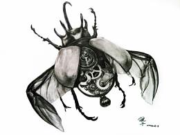 独角仙/蜜蜂