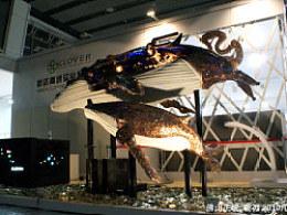 硬刃艺术——《鲸》
