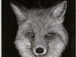 再被狐狸骗一次