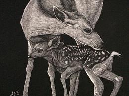 刮画《一鹿有你》