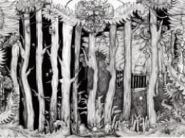 我们心里的一片密林