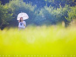 伞下的阳光
