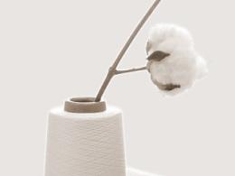 棉花与纱线