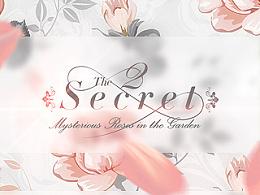 Secret-II
