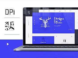 DPI官网设计