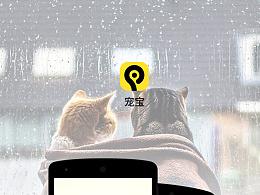 宠宝app软件界面设计以及web官网页面设计