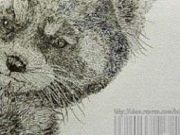V浣熊——给文化衫画的基础图案