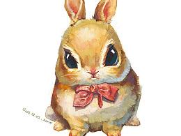 【萌宠 by 雪娃娃】——橙兔儿