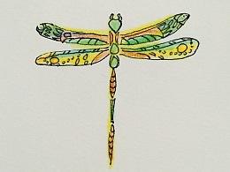 彩铅记录—《蜻蜓》
