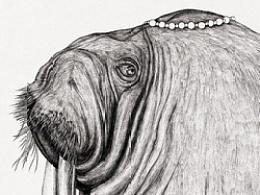 《漂流动物园》全系列作品
