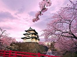 樱花日历界面