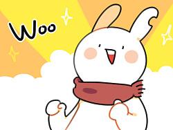 珀尔兔破了耳朵变成破耳兔啦!