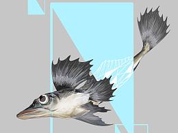 物种奇观-京东生鲜丑鱼宣传海报